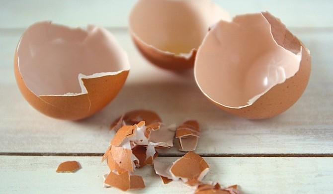 Perchè il guscio dell'uovo non va mai gettato