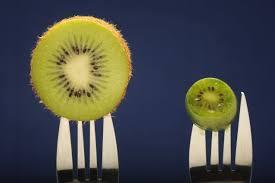 kiwi nergi 2