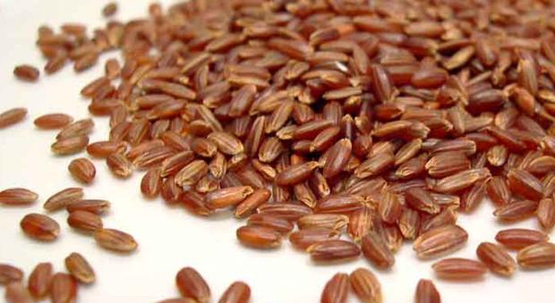 Anche riso rosso anticolesterolo ha reazioni avverse