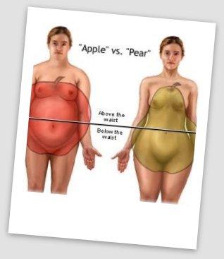 adoção menopausa 3.....