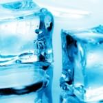 Quali alimenti si possono congelare e quali no