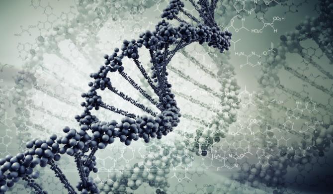 Attenzione ai kit che promettono diete basate sul DNA