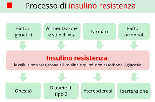 Insulino resistenza e difficoltà a dimagrire