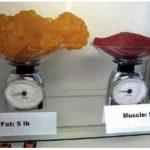 Centimetri VS Peso