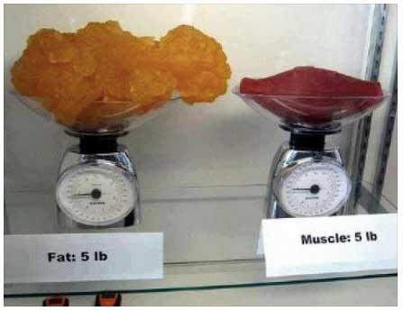 perdita di peso ma non volume 10